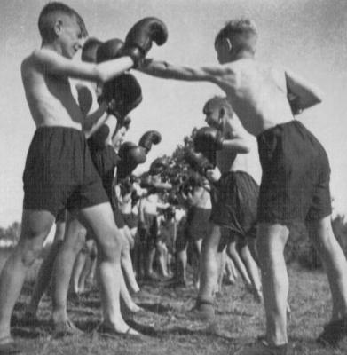 hj195